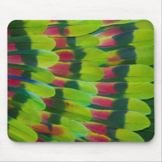 Amazon Parrot Green Feather Design Mouse Pad