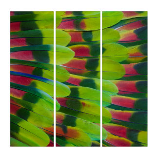 Amazon Parrot Green Feather Design Triptych