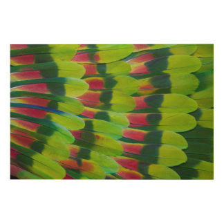 Amazon Parrot Green Feather Design Wood Wall Art