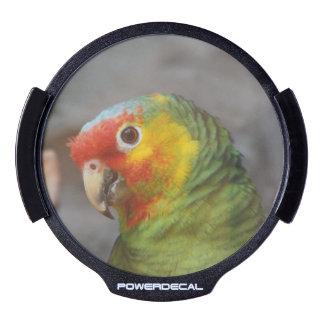 Amazon Parrot LED Car Decal
