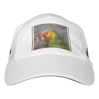 Amazon Parrot Headsweats Hat
