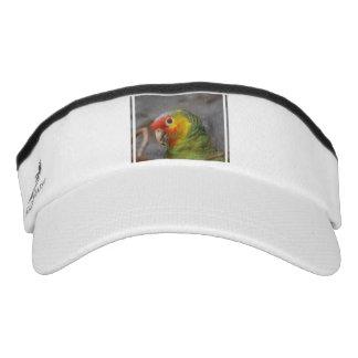Amazon Parrot Headsweats Visor