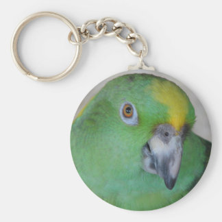 Amazon Parrot Keychain