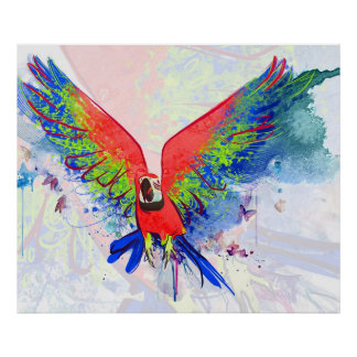 Amazon Parrot Macaw Poster