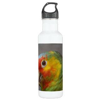 Amazon Parrot 24oz Water Bottle