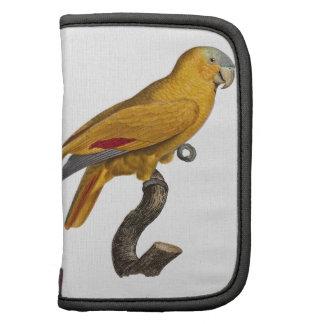 Amazon parrot planner