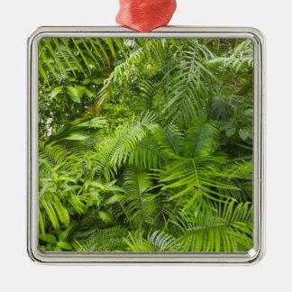 Amazon Rainforest, Amazonia, Brazil Metal Ornament