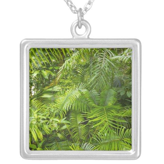 Amazon Rainforest, Amazonia, Brazil Silver Plated Necklace