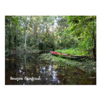 Amazon Rainforest Postcard