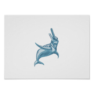 Amazon River Dolphin Drawing Poster