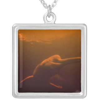Amazon River Dolphin (Inia geoffrensis) or Boto, Silver Plated Necklace