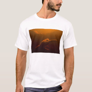 Amazon River Dolphin (Inia geoffrensis) or Boto, T-Shirt