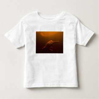 Amazon River Dolphin (Inia geoffrensis) or Boto, Toddler T-shirt