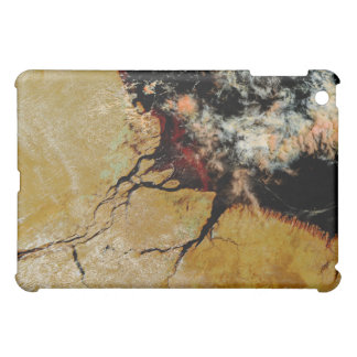 Amazon River in northern Brazil Case For The iPad Mini