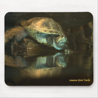 Amazon River Turtle Mousepad