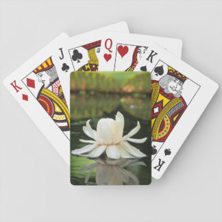 Amazon Water Lily (Victoria Amazonica) Flower Card Decks