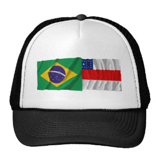 Amazonas & Brazil Waving Flags Trucker Hat