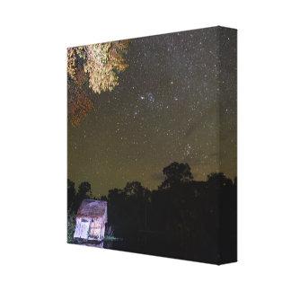 Amazonian Stars Canvas Print