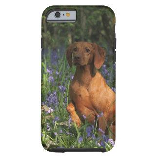 Amber Tough iPhone 6 Case