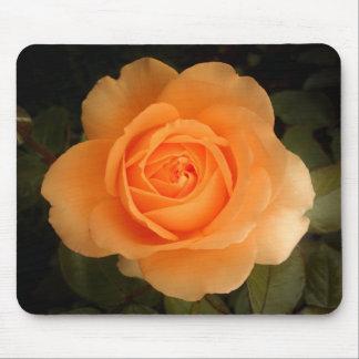 Amber Flush Rose - Mausepad Mouse Pad