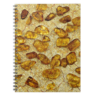 Amber inclusions | notebook