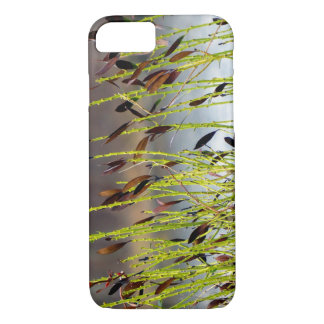Amber iPhone 8/7 Case