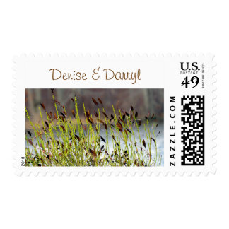 Amber Personalized Postage Stamps