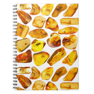Amber stone inclusions notebook