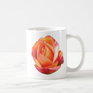 Amber Sunblaze Miniature Rose Coffee Mugs
