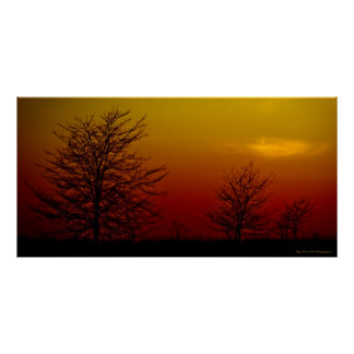 """""""Amber Sunset"""" Beautiful Image Art Wall Print"""