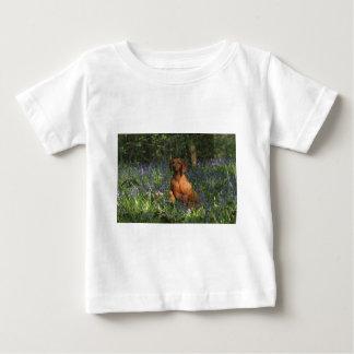 Amber Tee Shirt
