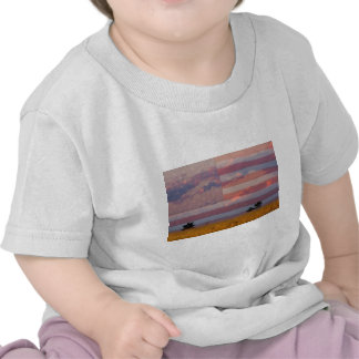 Amber Waves of Grain Tee Shirts