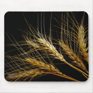 Amber Waves of Grain Wheat Mouse Pads