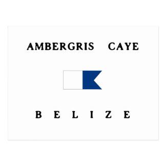 Ambergris Caye Belize Alpha Dive Flag Postcard