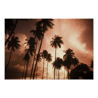 Ambergris Caye, Belize, Central America. 2 Print