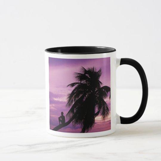 Ambergris Caye, Belize, Central America. Mug
