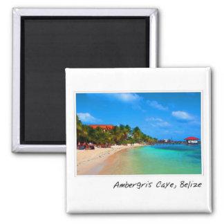 Ambergris Caye San Pedro Belice Imán Cuadrado