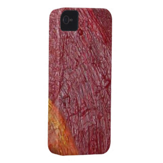 Ambers Case-Mate iPhone 4 Cases