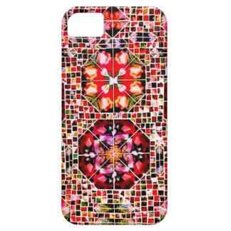 Ambers kaleido iPhone SE/5/5s case