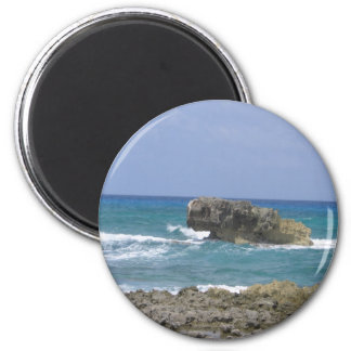 Ambers Natural Flow ! 2 Inch Round Magnet