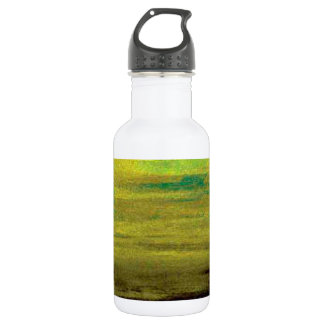Ambience (2) stainless steel water bottle