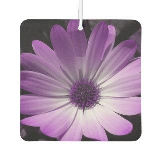 Ambientador de aire púrpura de la flor de la
