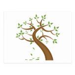 Ambiente de la naturaleza de los árboles de la postal