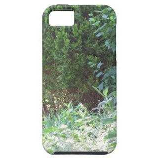 Ambiente salvaje de los regalos NVN672 del jardín iPhone 5 Funda