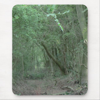 Ambion Wood at Bosworth Battlefield Mouse Pad