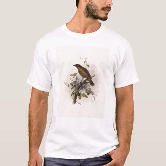 Amblyornis inornatus - Dull-coloured Bower-bird T-Shirt