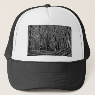 Ambresbury Banks Iron Age fortification Trucker Hat