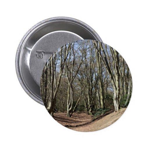 Ambresbury deposita el fortalecimiento de la edad  pin redondo de 2 pulgadas