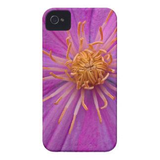 Ambrosial Gauze iPhone 4 Case