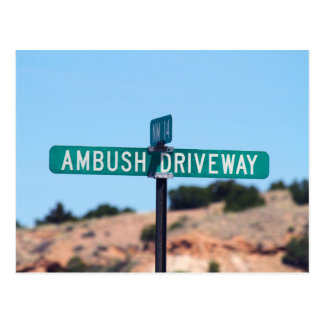 Ambush Driveway in New Mexico Postcard